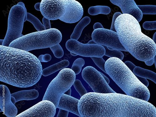 Leinwanddruck Bild bacteria