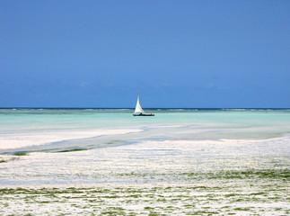 spiaggia zanzibar con barca a vela