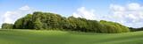 green panorama poster