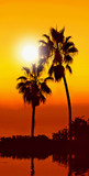 strong tropical sunset poster