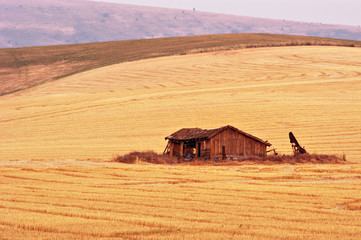 palouse country 2