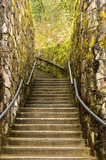 staircase in moss poster