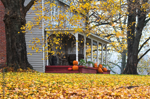 country home - 1864887