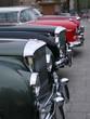 vintage cars bonnets line