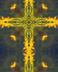 goldenrod cross