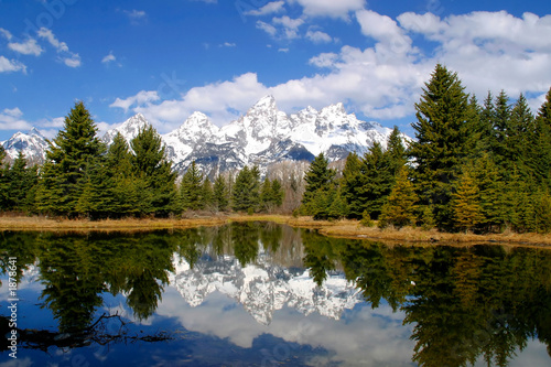 canvas print picture spring reflections