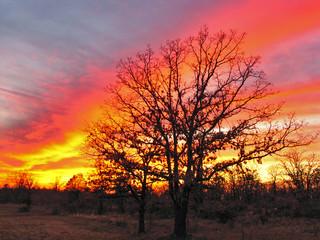 oklahoma sunset 5
