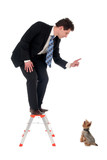businessman on top of a ladder pointing at dog poster