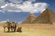 Leinwandbild Motiv sahara heat