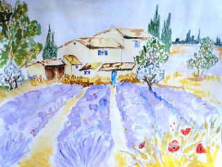 aquarelle d'un champ de lavande