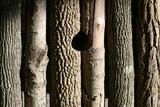 bark bckground poster
