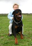 fillette et chien de garde poster