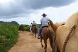 family on a trail on horseback