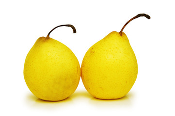 two yellow pears isolated on the white