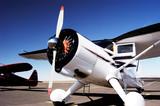 antique aircraft 6 poster