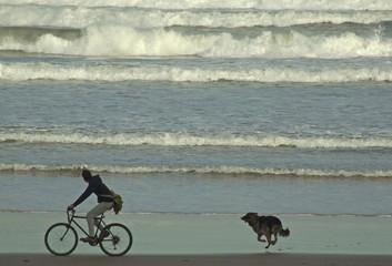 ciclista y perro por la playa