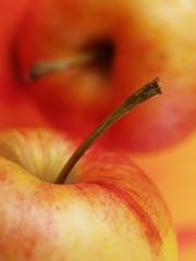 rote äpfel aus dem alten land 4