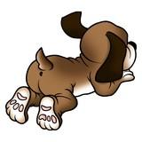 dog lying poster
