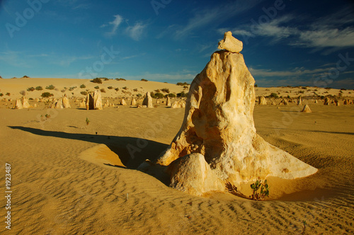 pinnacles desert in nambung national park, wa