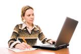 business women work on laptop poster