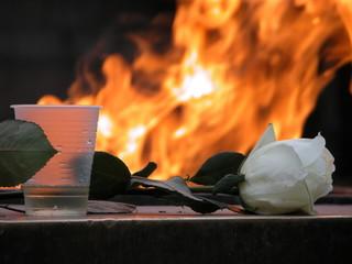 eternal flame behind flower