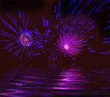 misty firework. illustration poster