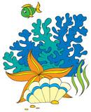 sea star, shell and coral fish poster