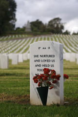 flowers on a soldiers grave