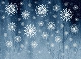 snowflakes on misty grey picture poster