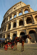 colosseum and horse