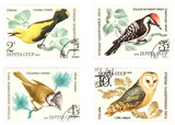 antique soviet post stamps with birds poster