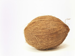 coconut..
