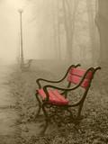 Czerwień otulona mgłą.