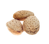 three almond nuts in a shell. poster