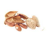 almond nuts in a shell poster