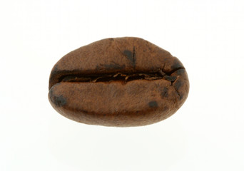 coffee bean - real macro