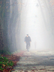 old man cycling at alley