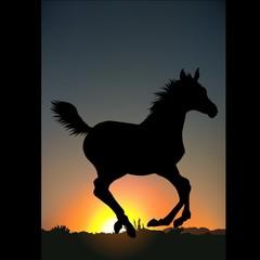 horse silhouette c