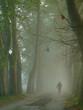 senior walking in nature