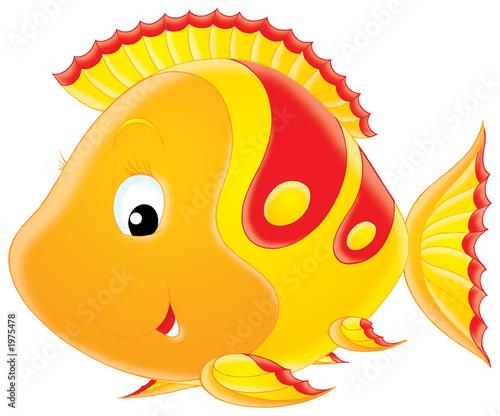 Leinwanddruck Bild coral fish