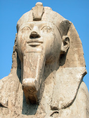 the memphis sphinx, egypt