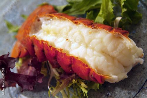 Leinwandbild Motiv lobster tail