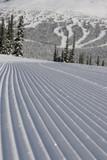 groomed ski run poster