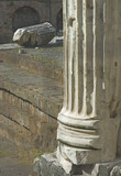 roman column poster