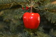 christmas tree ornament apple