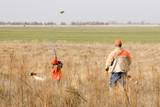 young quail hunter poster