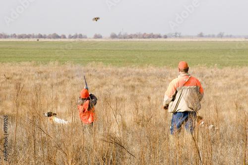 young quail hunter - 1991026