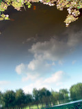 clouds reflected in the pond poster