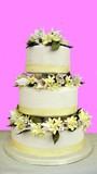 wedding cake.decoration.gift.celebration.occassion poster