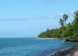 tropical shore poster